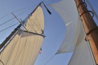 Schooner - Topsails - Website