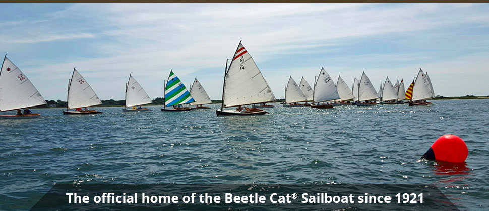 banner3-bettlecat-racing
